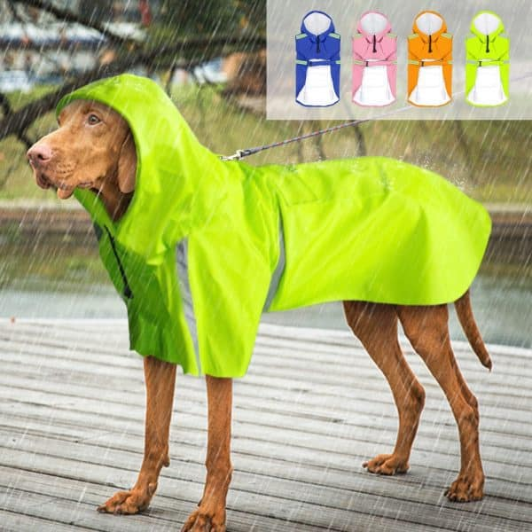 Reflective Dog Raincoat for Big Dogs