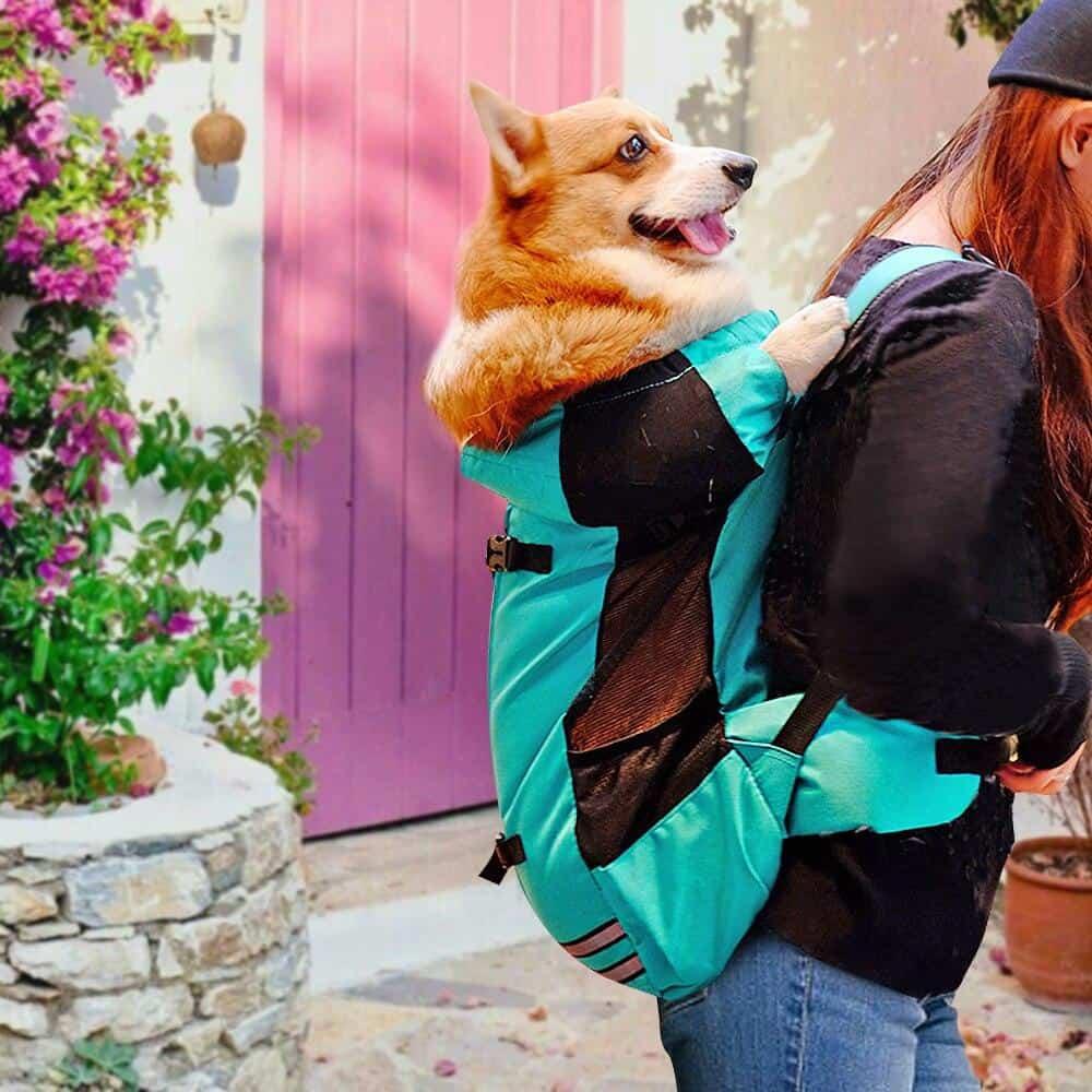 Dog Carrier Backpack Medium Dogs